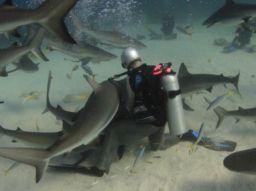 voglia-di-immersione-ecco-10-luoghi-da-evitare
